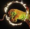 Цирки в Горбатовке